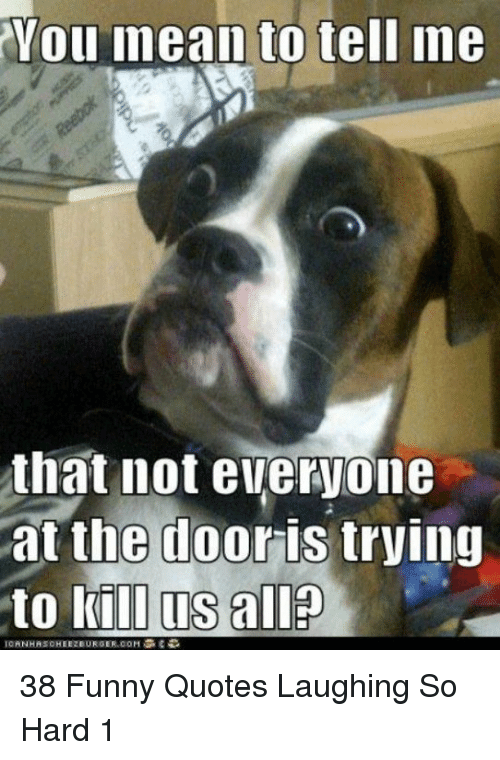 Funny, Quotes, and Com: Vou  inean to tell me  that not everyone  at the dooris trving  to kill us all?  ICANHASCHEEZBURGER.COM ง% €-D 38 Funny Quotes Laughing So Hard 1