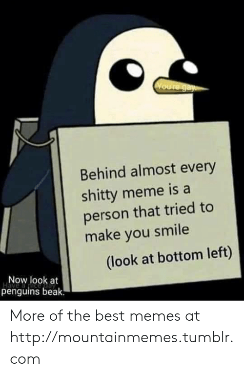 Make You Smile: Voure gay  Behind almost every  shitty meme is a  person that tried to  make you smile  (look at bottom left)  Now look at  penguins beak. More of the best memes at http://mountainmemes.tumblr.com
