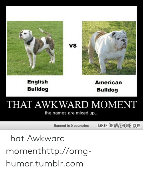 Mixed Up: vs  English  Bulldog  American  Bulldog  THAT AWKWARD MOMENT  the names are mixed up...  TASTE OF AWESOME.COM  Banned in 0 countries That Awkward momenthttp://omg-humor.tumblr.com