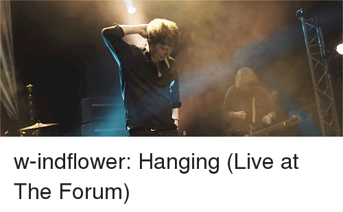 forum: w-indflower:  Hanging (Live at The Forum)