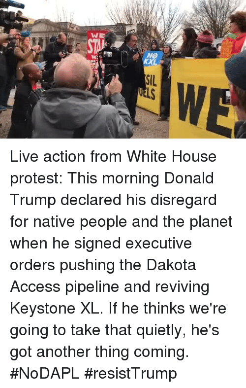 Dakota Access pipeline: W  NO  SIL Live action from White House protest: This morning Donald Trump declared his disregard for native people and the planet when he signed executive orders pushing the Dakota Access pipeline and reviving Keystone XL. If he thinks we're going to take that quietly, he's got another thing coming. #NoDAPL #resistTrump