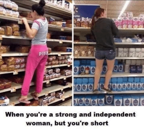 Funny, Strong, and Woman: w Roly  PINE  When you're a strong and independent  woman, but you're short