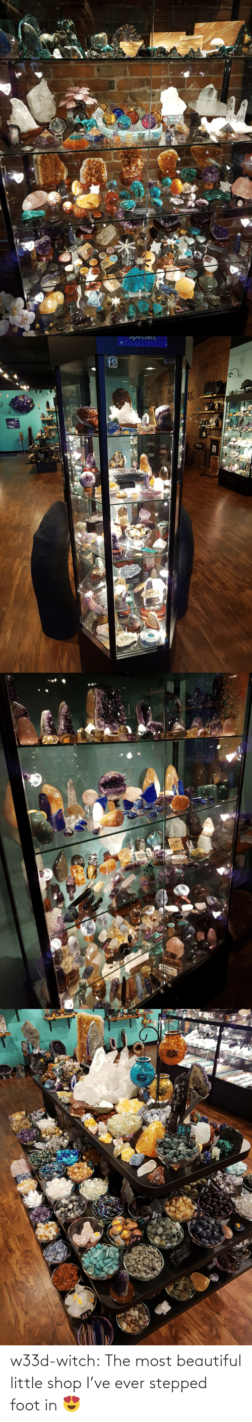 Ive: w33d-witch: The most beautiful little shop I've ever stepped foot in 😍