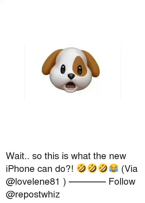 the new iphone: Wait.. so this is what the new iPhone can do?! 🤣🤣🤣😂 (Via @lovelene81 ) —�—�—�—� Follow @repostwhiz