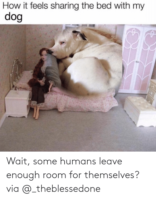 Leave: Wait, some humans leave enough room for themselves?via @_theblessedone