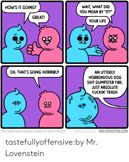 """Lovenstein: WAIT, WHAT DID  YOU MEAN BY """"IT?""""  HOW'S IT GOING?  GREAT!  YOUR LIFE  AN UTTERLY  HORRENDOUS DOG  SHIT DUMPSTER FIRE  JUST ABSOLUTE  FUCKIN' TRASH  OH, THAT'S GOING HORRIBLY  THIS COMIC MADE POSSIBLE THANKS TO SHAY CANFIELD MrLovenstein MRLOVENSTEIN.COM tastefullyoffensive:by Mr. Lovenstein"""