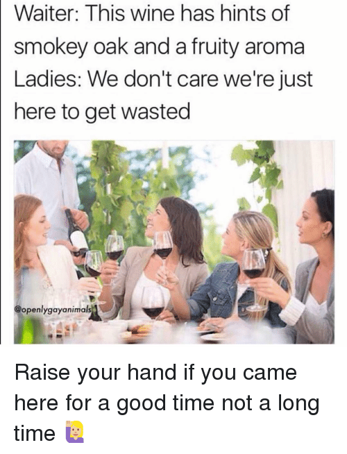 Wine, Good, and Time: Waiter: This wine has hints of  smokey oak and a fruity aroma  Ladies: We don't care we're just  here to get wasted  @openlygayanimals Raise your hand if you came here for a good time not a long time 🙋🏼♀️