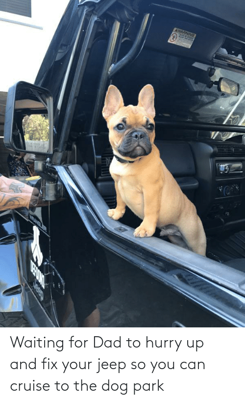 Jeep: Waiting for Dad to hurry up and fix your jeep so you can cruise to the dog park