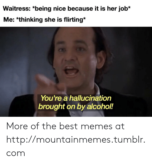 waitress: Waitress: *being nice because it is her job*  Me: *thinking she is flirting*  You're a hallucination  brought on by alcohol!  18 More of the best memes at http://mountainmemes.tumblr.com