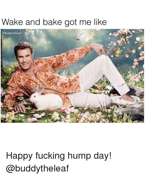 Hump Day: Wake and bake got me like  @BuddyTheLeat Happy fucking hump day! @buddytheleaf