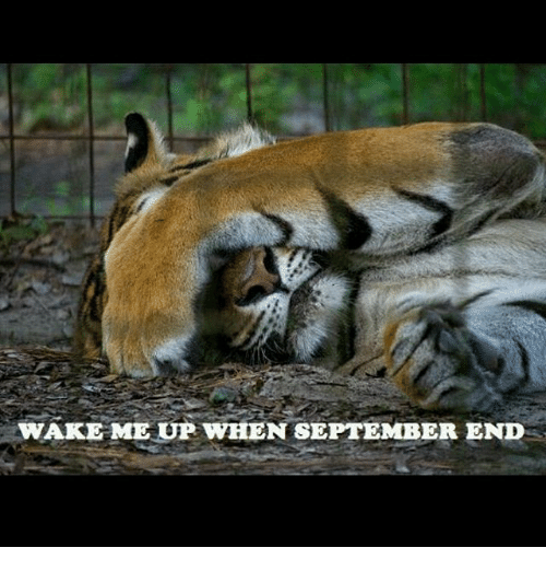 Indonesian (Language), September, and Wake: WAKE ME UP WHEN SEPTEMBER END