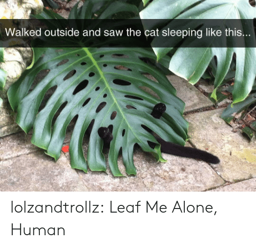 Being Alone, Saw, and Tumblr: Walked outside and saw the cat sleeping like this... lolzandtrollz:  Leaf Me Alone, Human
