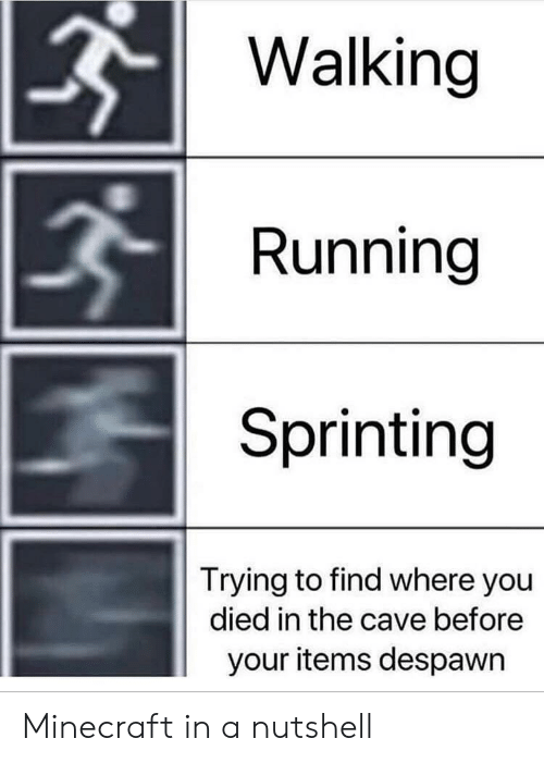 You Died: Walking  Running  Sprinting  Trying to find where you  died in the cave before  your items despawn Minecraft in a nutshell
