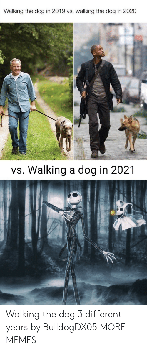 walking: Walking the dog 3 different years by BulldogDX05 MORE MEMES