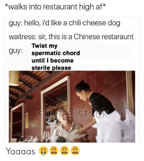 Spermatic: *walks into restaurant high af*  guy: hello, i'd like a chili cheese dog  waitress: sir, this is a Chinese restaraunt  Twist my  spermatic chord  until I become  sterile please  guy:  Snyterstock Yaaaas 🤑😩😩😩