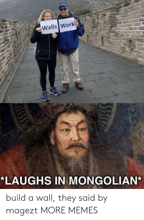 A Wall: Walls Work  *LAUGHS IN MONGOLIAN build a wall, they said by magezt MORE MEMES
