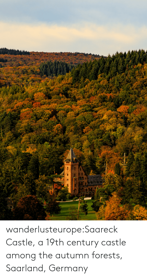 Los: wanderlusteurope:Saareck Castle, a 19th century castle among the autumn forests, Saarland, Germany