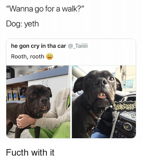 """Wanna Go For A Walk: Wanna go for a walk?  Dog: yeth  """"  """"  he gon cry in tha car @_Taii  Rooth, rooth Fucth with it"""