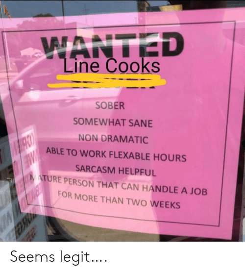 mature: WANTED  Line Cooks  SOBER  SOMEWHAT SANE  NON DRAMATIC  ABLE TO WORK FLEXABLE HOURS  SARCASM HELPFUL  MATURE PERSON THAT CAN HANDLE A JOB  W  FOR MORE THAN TWO WEEKS Seems legit….