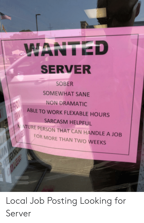 Work, Sober, and Sarcasm: WANTED  SERVER  SOBER  SOMEWHAT SANE  NON DRAMATIC  CO  ABLE TO WORK FLEXABLE HOURS  EW  MATURE PERSON THAT CAN HANDLE A JOB  SARCASM HELPFUL  FOR MORE THAN TWO WEEKS  22T00 Local Job Posting Looking for Server