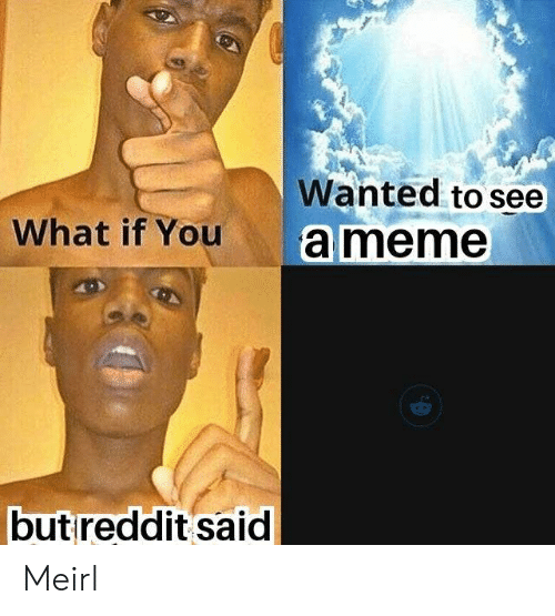 MeIRL, Wanted, and You: Wanted to see  What if You  ameme  butreddit said Meirl