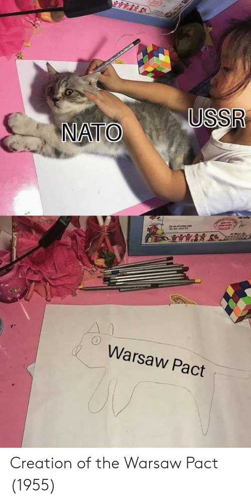 warsaw: Warsaw Pact Creation of the Warsaw Pact (1955)