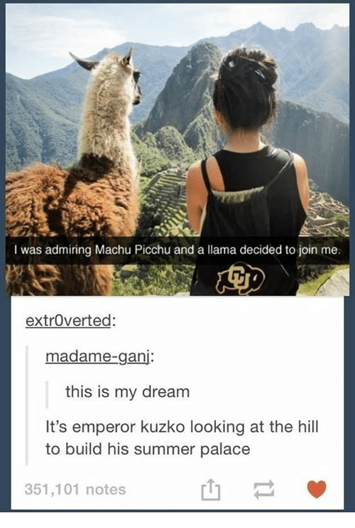machu picchu: was admiring Machu Picchu and a llama decided to join me.  extroverted  madame-ganj  this is my dream  It's emperor kuzko looking at the hill  to build his summer palace  351,101 notes