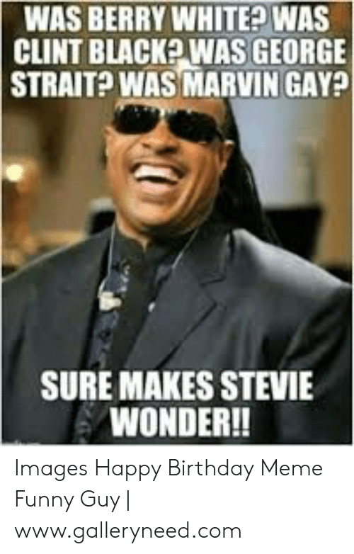 Gay Birthday Meme: WAS BERRY WHITE WAS  CLINT BLACK? WAS GEORGE  STRAIT? WAS MARVIN GAY?  SURE MAKES STEVIE  WONDER!! Images Happy Birthday Meme Funny Guy | www.galleryneed.com