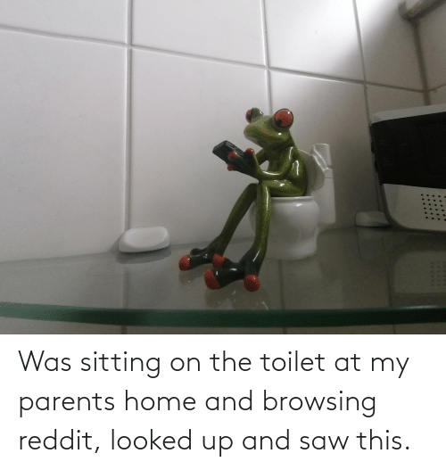 My Parents: Was sitting on the toilet at my parents home and browsing reddit, looked up and saw this.