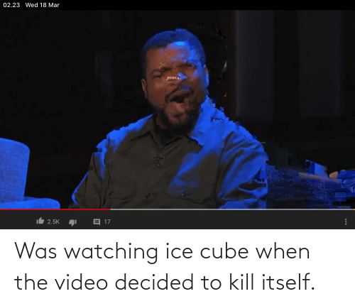 Ice Cube, Video, and Ice: Was watching ice cube when the video decided to kill itself.