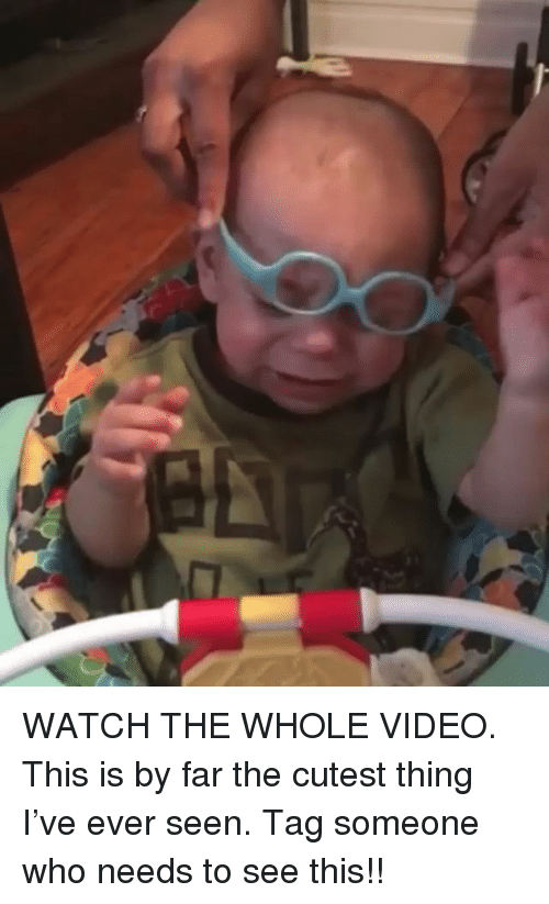 Funny, Video, and Watch: WATCH THE WHOLE VIDEO. This is by far the cutest thing I've ever seen. Tag someone who needs to see this!!