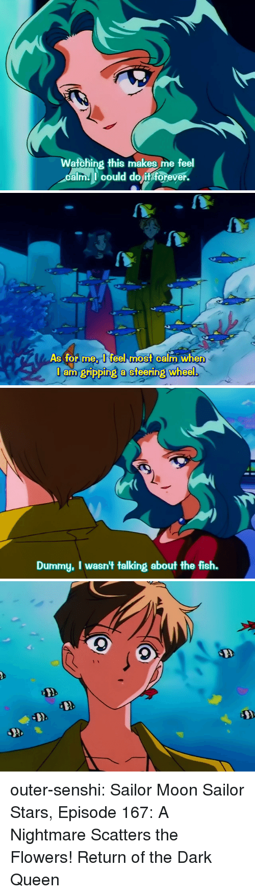 A Nightmare: Watching this makes me feel  calm could do it forever.   As for meI feel most calm when  J am gripping a steering wheel   Dummy, I wasn't talking about the fish. outer-senshi:  Sailor Moon Sailor Stars, Episode 167: A Nightmare Scatters the Flowers! Return of the Dark Queen