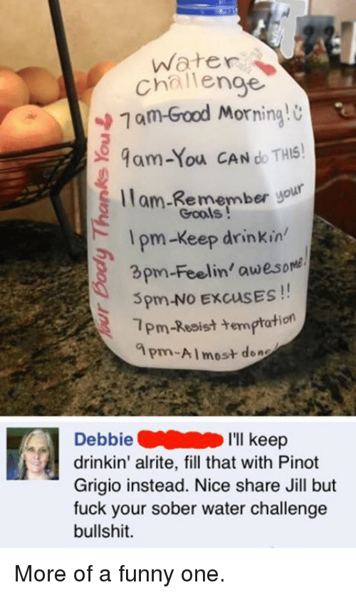 apm: Water  Challenge  1 am Good Morning  9am-You CAN do THIS!  llam Remember yo  Gools  pm-Keep drinkin'  3pm-Feelin' awesome  5pm-No ExcusES  1pm-Resist temptation  apm-Almost den  Debbie  I'll keep  drinkin' alrite, fill that with Pinot  Grigio instead. Nice share Jill but  fuck your sober water challenge  bullshit. More of a funny one.