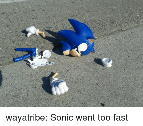 Tumblr, Blog, and Http: wayatribe: Sonic went too fast