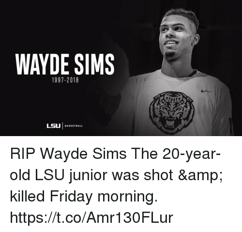 Basketball, Friday, and Memes: WAYDE SIMS  1997-2018  LSU | BASKETBALL RIP Wayde Sims  The 20-year-old LSU junior was shot & killed Friday morning. https://t.co/Amr130FLur