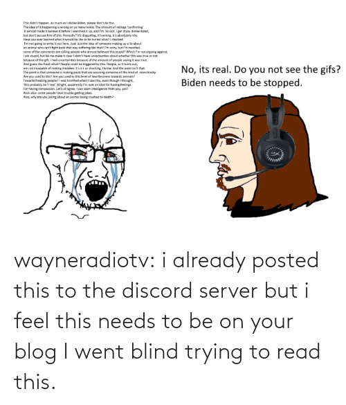server: wayneradiotv: i already posted this to the discord server but i feel this needs to be on your blog   I went blind trying to read this.