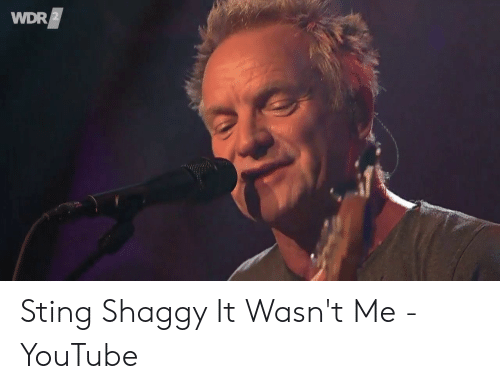 shaggy it wasnt me: WDR Sting Shaggy It Wasn't Me - YouTube
