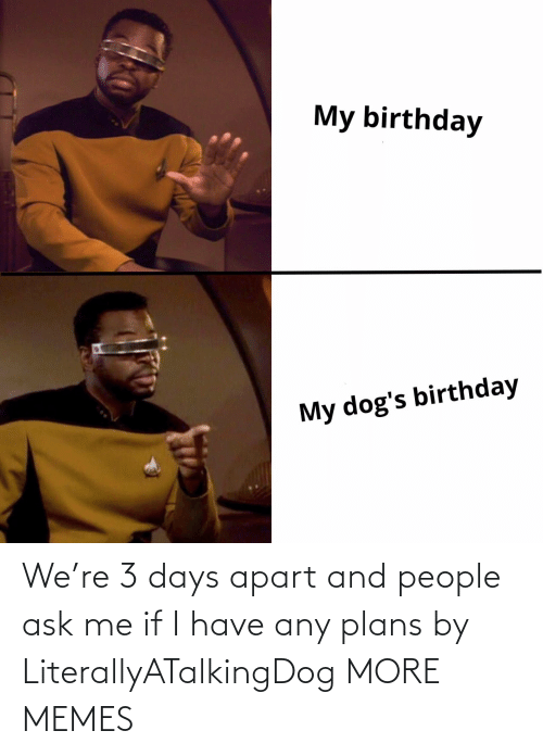Apart: We're 3 days apart and people ask me if I have any plans by LiterallyATalkingDog MORE MEMES