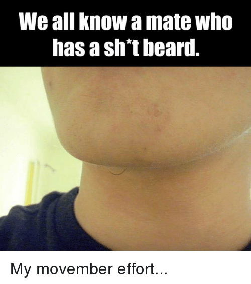 Beard, Memes, and Movember: We all know a mate who  has a sht beard. My movember effort...