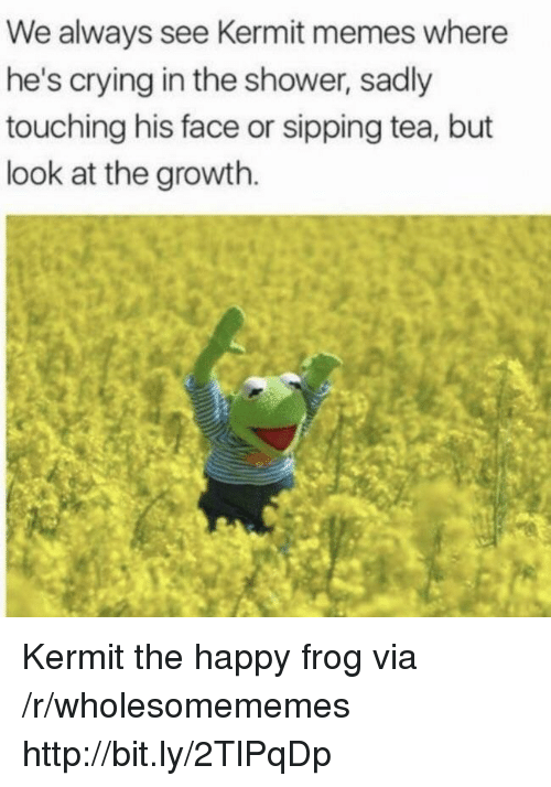 sipping tea: We always see Kermit memes where  he's crying in the shower, sadly  touching his face or sipping tea, but  look at the growth. Kermit the happy frog via /r/wholesomememes http://bit.ly/2TlPqDp