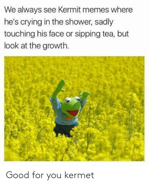 sadly: We always see Kermit memes where  he's crying in the shower, sadly  touching his face or sipping tea, but  look at the growth. Good for you kermet