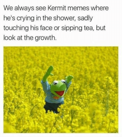 sipping tea: We always see Kermit memes where  he's crying in the shower, sadly  touching his face or sipping tea, but  look at the growth.