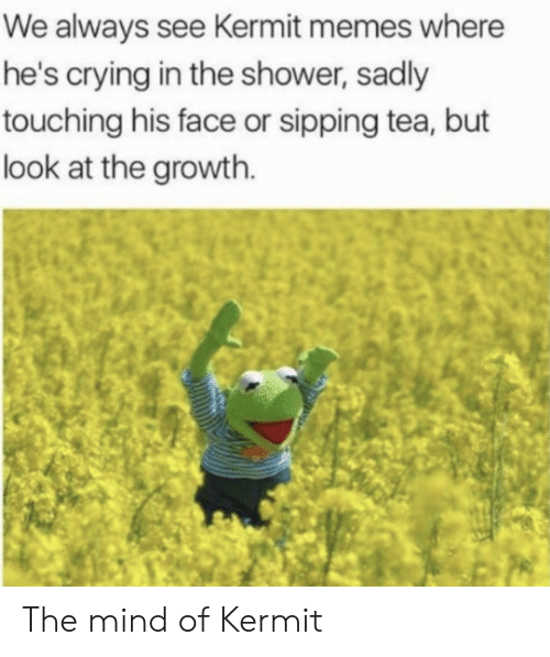 Sipping: We always see Kermit memes where  he's crying in the shower, sadly  touching his face or sipping tea, but  look at the growth. The mind of Kermit