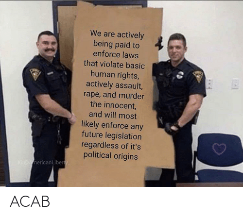 human: We are actively  being paid to  enforce laws  that violate basic  human rights,  actively assault,  rape, and murder  the innocent,  and will most  likely enforce any  future legislation  regardless of it's  political origins  IG AmericanLiberty ACAB