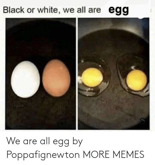egg: We are all egg by Poppafignewton MORE MEMES