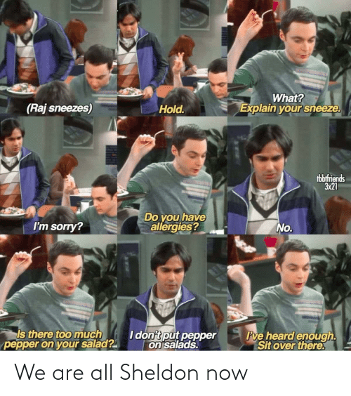all: We are all Sheldon now
