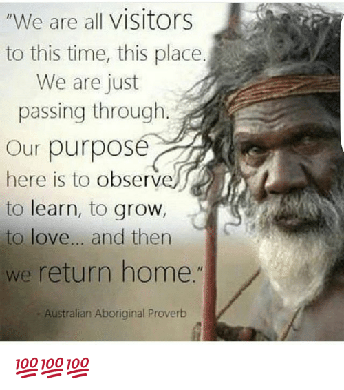 """Observative: """"We are all visitors  to this time, this place  We are just  passing through  Our purpose  here is to observ  to learn, to grow,  to love... and then  we return home.""""  Australian Aboriginal Proverb 💯💯💯"""