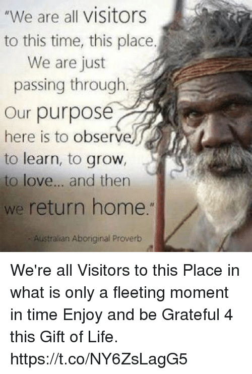 """Observative: """"We are all visitors  to this time, this place.  We are just  passing through  Our purpose  here is to observ  to learn, to grow,  to love... and then  we return home.""""  Australian Aboriginal Proverb We're all Visitors to this Place in what is only a fleeting moment in time Enjoy and be Grateful 4 this Gift of Life. https://t.co/NY6ZsLagG5"""
