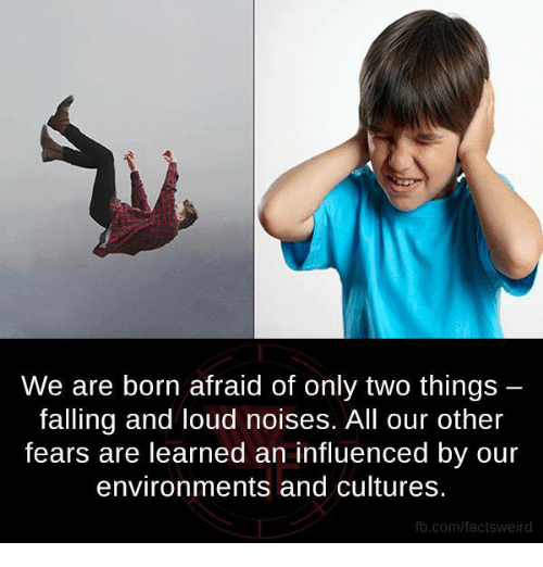 Memes, fb.com, and 🤖: We are born afraid of only two things  falling and loud noises. All our other  fears are learned an influenced by our  environments and cultures.  fb.com/factsweird
