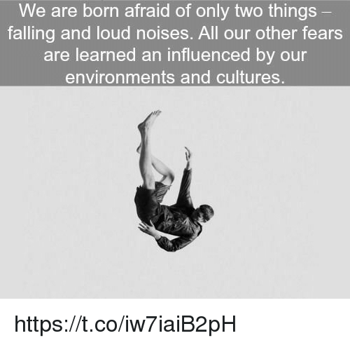 All, Born, and Loudness: We are born afraid of only two things  falling and loud noises. All our other fears  are learned an influenced by our  environments and cultures https://t.co/iw7iaiB2pH